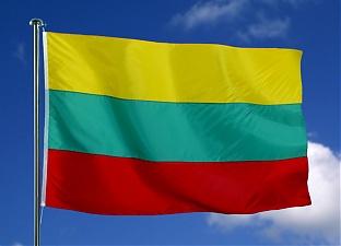Litouwer mag rijbewijs inleveren