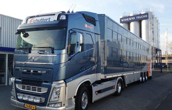 Ook rijtje Volvo FH's voor Schuttert