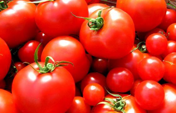 Rusland boycot bijna alle voedsel uit EU