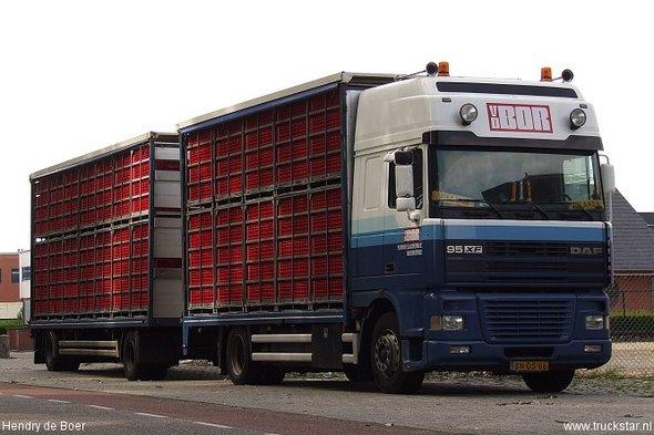 Opheffing landelijk vervoersverbod pluimvee