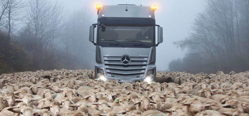 RoadStars: nieuwe community voor Mercedes-fans